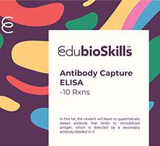 Antibody Capture ELISA Teaching kit