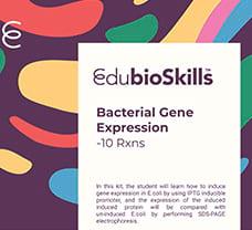 Bacterial Gene Expression Teaching kit