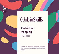 Restriction Mapping Teaching kit